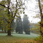 2011.10.15. Šiberna (23)