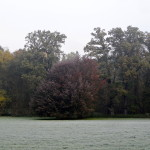 2011.10.15. Šiberna (32)