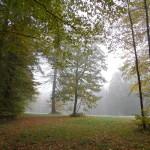 2011.10.15. Šiberna (78)