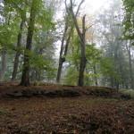 2011.10.15. Šiberna (88)