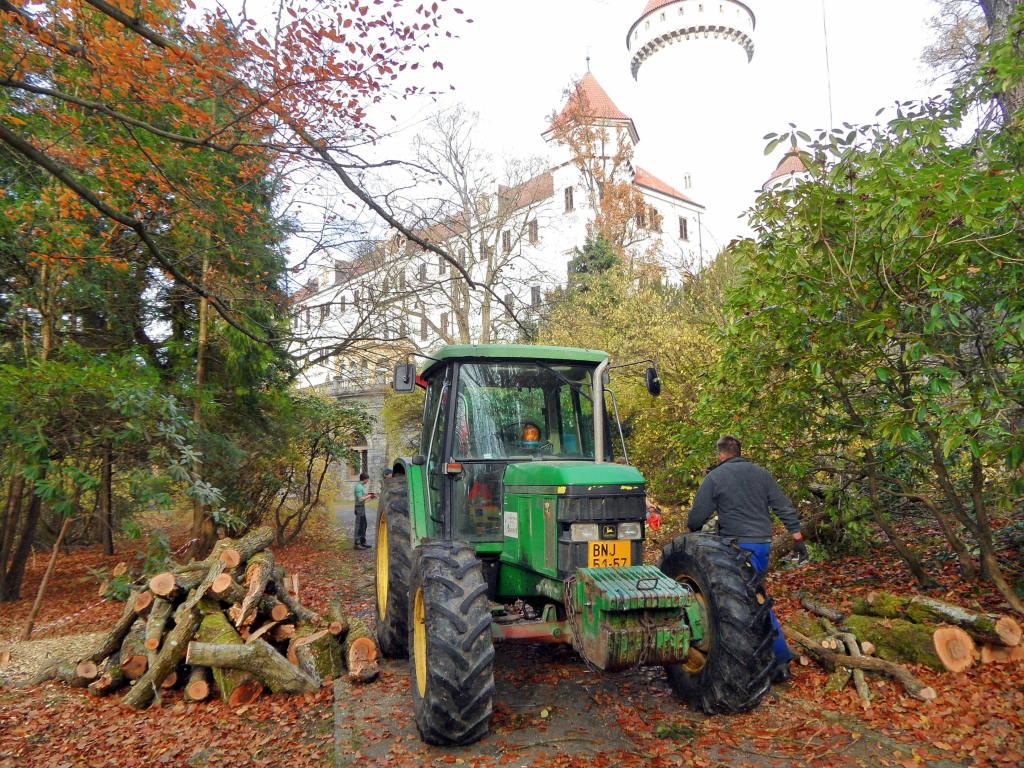 8. brigáda 8.11.2014 - pomáháme správě zámku s likvidací nebezpečných dřevin na jižní zámecké stráni a v Růžové zahradě