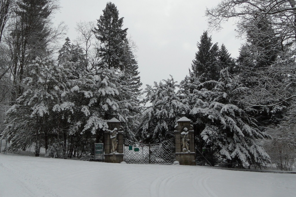 2013.02.20. (11)